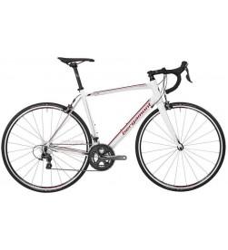 Bicicleta Bergamont Prime 6.0 2017