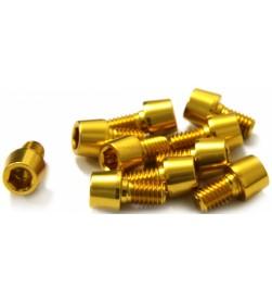 Tornillo Aluminio MSC M6 Dorados (Varias longitudes)