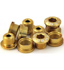 Tornillos Plato Aluminio MSC 5 tornillos + 5 tuercas M8x5.5/6.5 Dorado